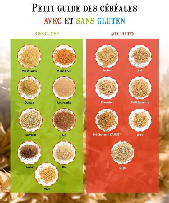 https://doucefrugalite.files.wordpress.com/2013/01/petit-guide-des-cc3a9rc3a9ales-avec-et-sans-gluten.jpg?w=544&h=657