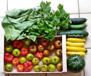 fruitstash -tomates, pastèque, salades et courgettes de Riedinger (alsace)