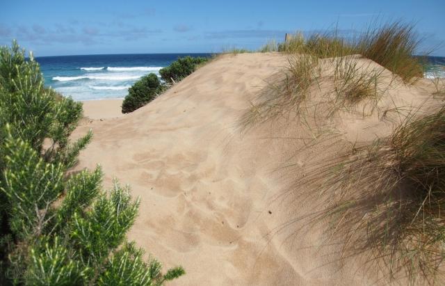 great-ocean-walk-dunes