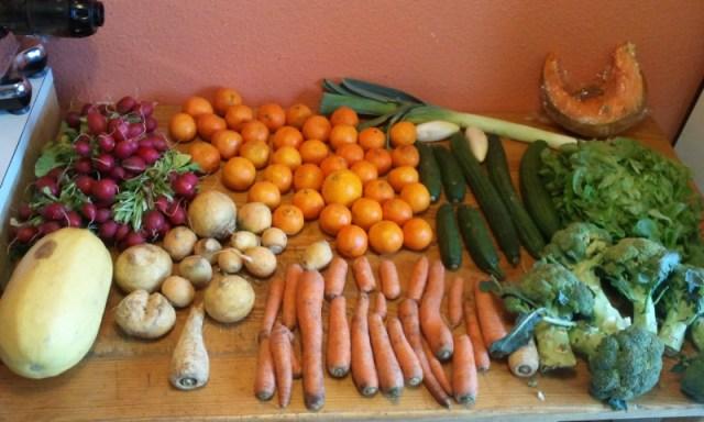 freegan fruits légumes bios bio récup déchétarisme gratuit