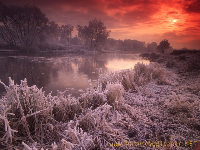 river_avon_great_britain___id_38615-1400x1050