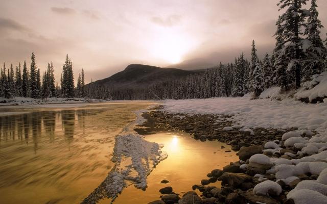 winter-nature-wallpaper-1440x900-0039