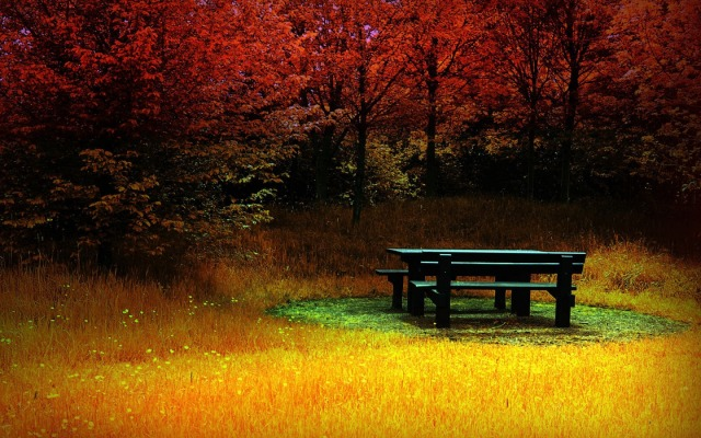 wp_fire_autumn_1440x900