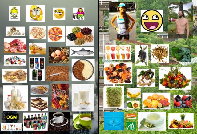 Comparaison régime classique / régime crudivore-végétalien