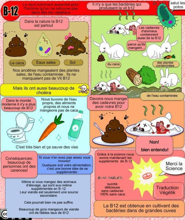 B12 BD explications végétaliens vegan végétarien vitamine carence caca eau souillée pourri