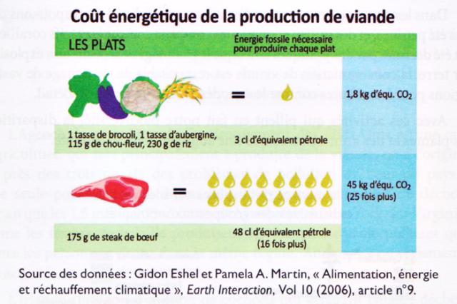 Coût énergétique de la production de viande