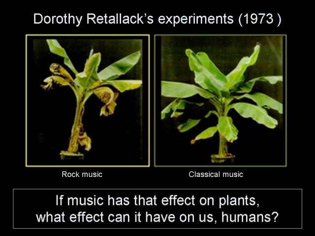 Dorothy Retallack's experiments (1973)