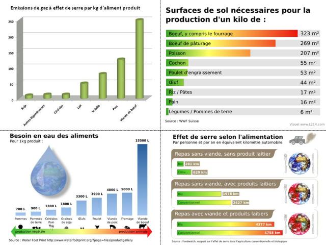 impact consommation viande végétal végétalien végétarien carniste préservation environnement pollution planète