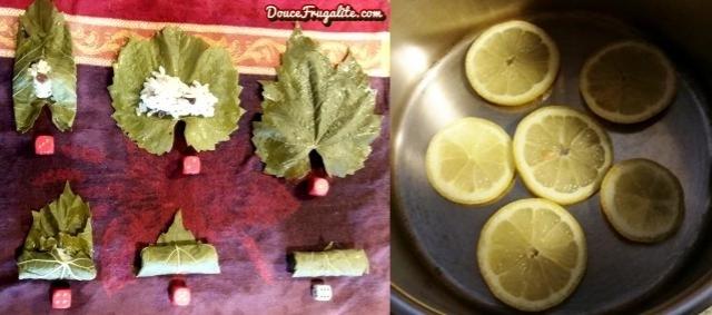 feuilles de vigne-étapes et citron