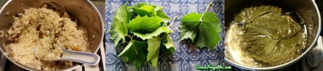 feuilles de vigne et riz