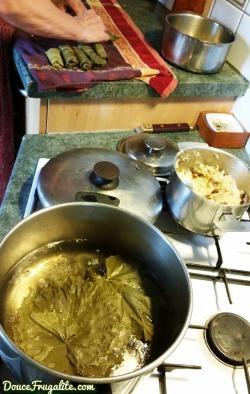 feuilles-de-vigne-aperçu-recette
