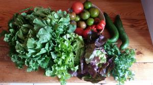 gardemanger légumes