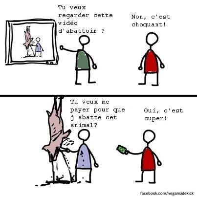 video-abattoir-viande vegan-sidekick français BD
