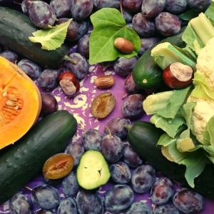 automne légumes fruit, marron, lierre, chou-fleur, courge, butternut, concombre, quetsche