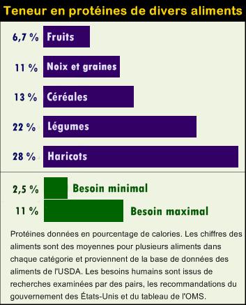 taux de protéines minimal et maximal. fruits, graines, noix, céréales, légumes, haricots